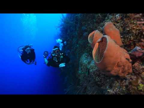 The Cayman Islands for Advanced Divers
