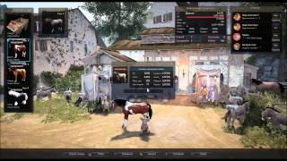 Разведение лошадей в Black Desert (7 грейд)