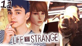 NIE ZADZIERAJ Z FRANKIEM - Life is Strange #11