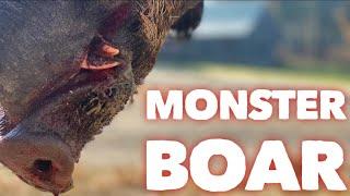 MONSTER BOAR At Hollis Farms