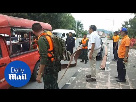Thailand officials prepare for Tropical Storm Pabuk