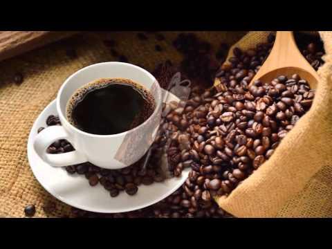 Starting a Coffee Shop Business | Java Times Caffe.com