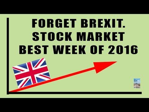 Central Banks Activate Plunge Protection As BREXIT Began Stock Market CRASH!