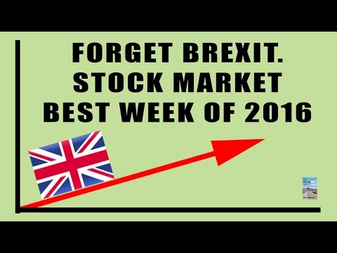 Central Banks Activate Plunge Protection As BREXIT Began Stock Market CRASH!