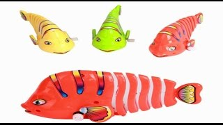 Video kids cute colorful fish tin toys child vintage clockwork oyuncak baby plastic download MP3, 3GP, MP4, WEBM, AVI, FLV Juni 2018