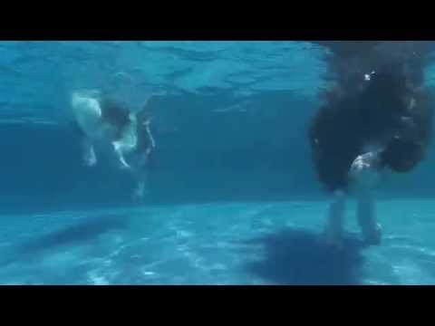 English Springer Spaniels Oliver & Frieda swim & dive underwater in a swimming pool chasing dog toys