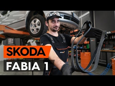 Как заменить поликлиновый ремень двигателя SKODA FABIA 1 (6Y5) [ВИДЕОУРОК AUTODOC]