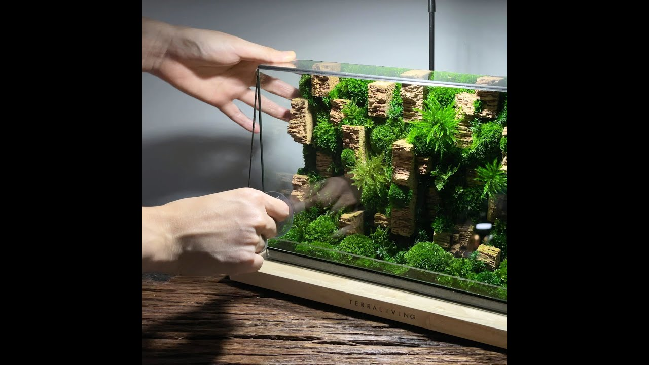 The Endolith - A Preserved Moss Wall Terrarium by TerraLiving