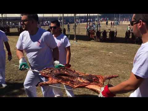 Unos 3.000 comensales se reúnen en Amil para disfrutar del 'porquiño'