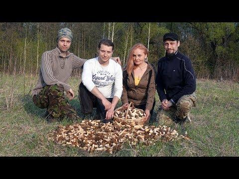 Мегазакрытие сезона Сморчковой шапочки - охота удалась!