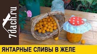 Zapętlaj 🍯 Сливы в желе: заготовка на зиму пальчики оближешь! - 7 дач | 7dach.ru