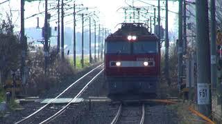 【JR貨】EH500-44牽引 高速貨物 3081レ (FHD)