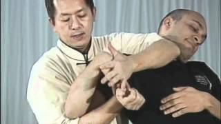 Tai Chi, Тай чи Ч17 Shang Ya Wan, дожим кисти