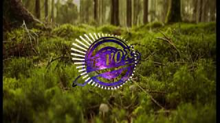 FE Forest Birds|HD Music|FE VOX|Trendy Music|2018