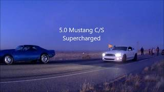 GT/CS Mustang 5.0 vs Pontiac Firebird