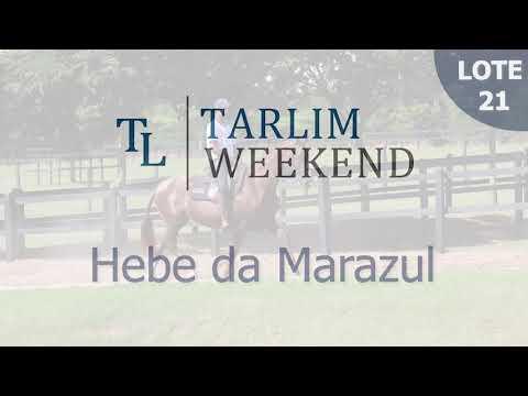 Lote 21 - Hebe da Marazul (6º Leilão Tarlim)