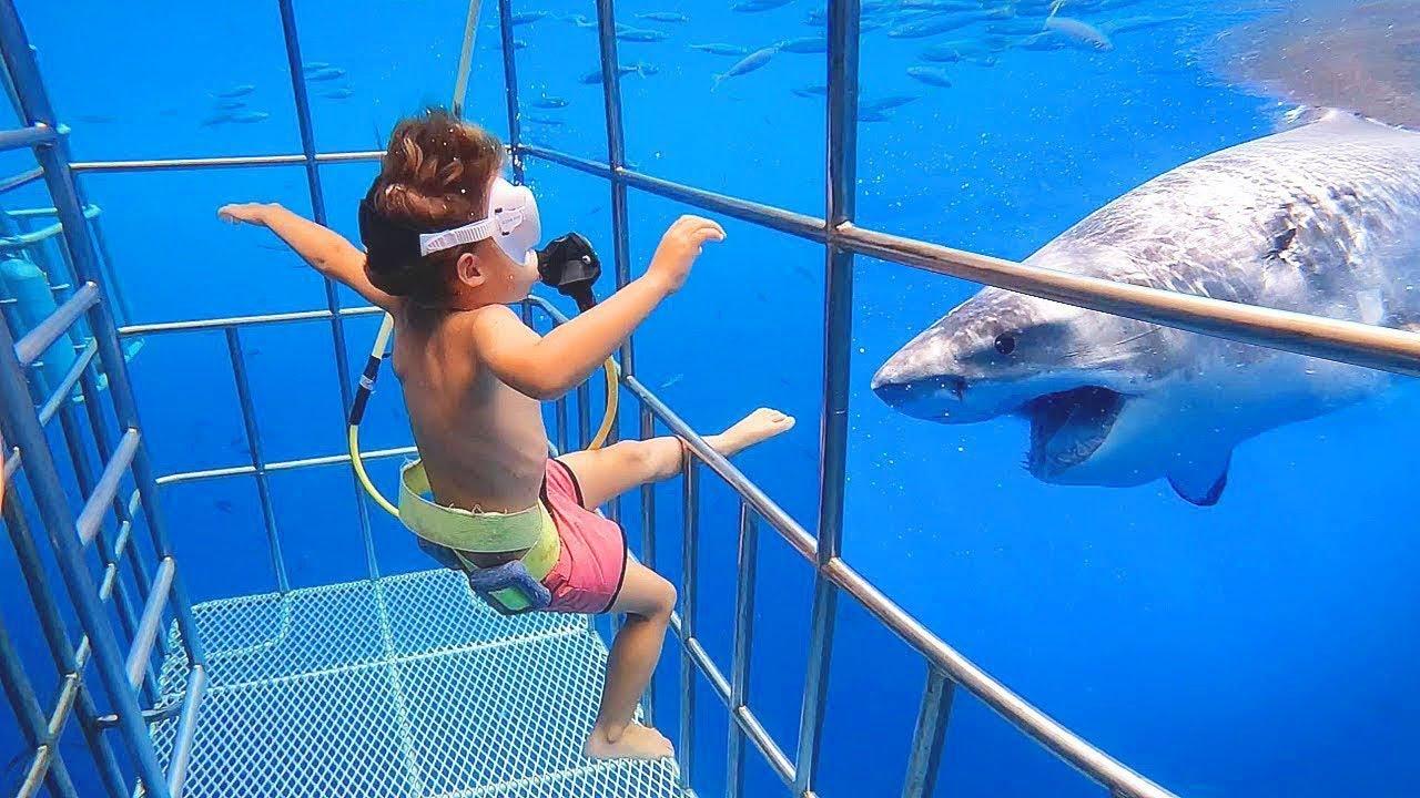 Я Ржал До Слез Приколы  Смешные Видео  Смешная реакция ребенка на рыбу  акуленок ду ду ду