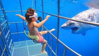 Я Ржал До Слез😂 Приколы / Смешные Видео / Смешная реакция ребенка на рыбу / акуленок ду ду ду