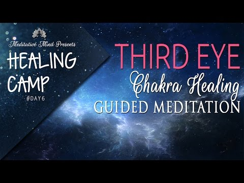 Third Eye Chakra Healing Guided Meditation | Healing Camp 2016 | Day #6
