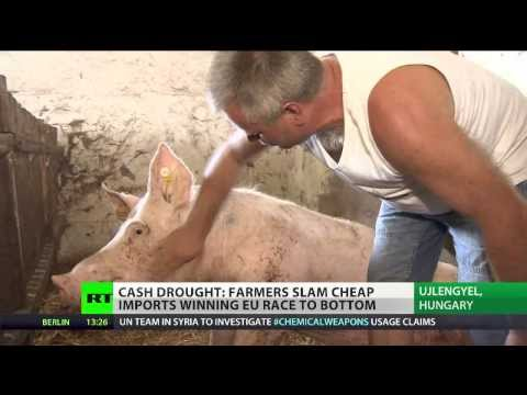 Cash Drought: Hungarian farmers starved of business since joining EU