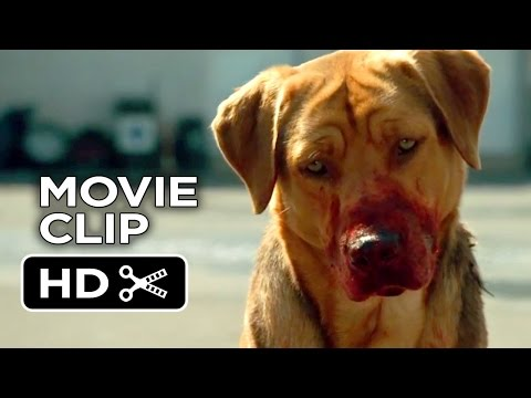 White God Movie CLIP - Dog Pack (2014) - Drama HD