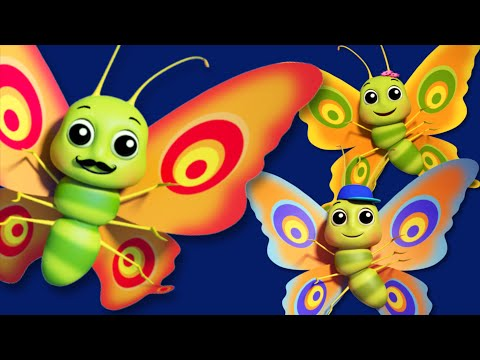 Butterfly Finger Family  3D Nursery Rhymes For Kids And Childrens  Songs For Baby kids tv S02 EP039