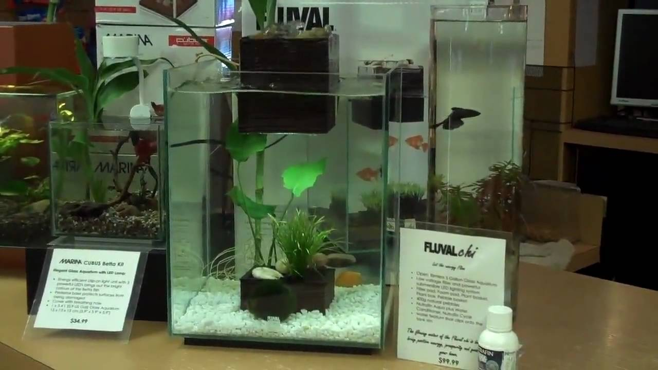 Fluval Chi Aquarium With Water Feature At Aquariums West