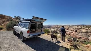 Pack Goat Hiking, Camping, Fishing & Firebox Stove Cooking With My Dogs Ash & Juni Part 01/04