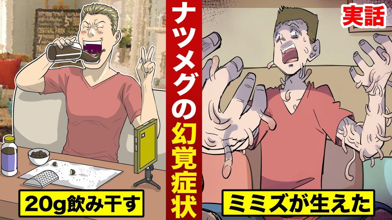 【実話】ナツメグの幻覚効果。一気飲みで...体からミミズが生えた。