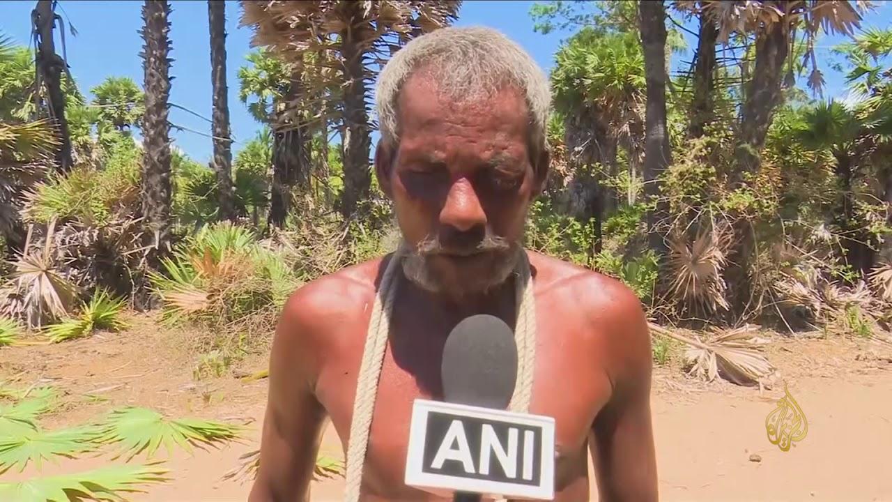 الجزيرة:هذا الصباح- هندي كفيف يمتهن قطع سعف النخيل