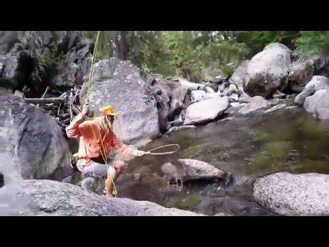 California And Nevada Fly Fishing: Sierras