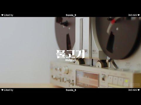 프로미스나인 '물고기(Mulgogi)' Special Video