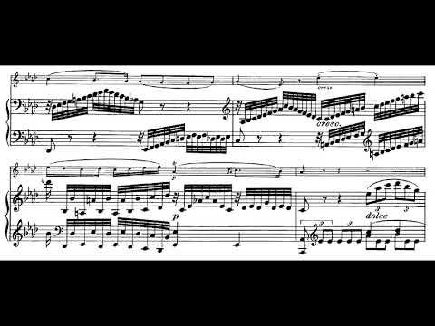 Beethoven: Violin Sonata no. 7 in C minor, op. 30 no. 2