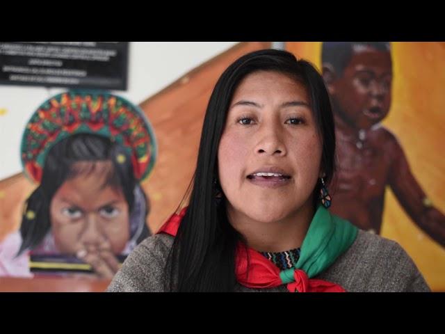 Nohelia Campo, Consejera Mayor CRIC, habla del Pacto por la vida y la Paz