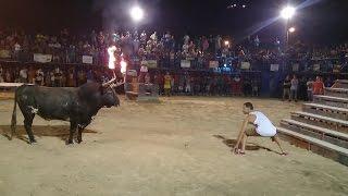 Ne pas jouer avec le taureau aux cornes de feu