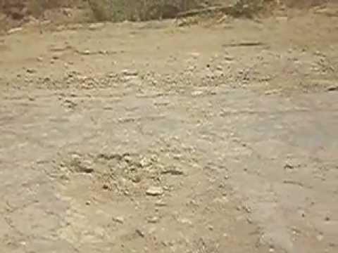 Worst Condition of Sujawal Mirpur Bathoro Road Cooruptions of Billion in Roads Thatta..MOV