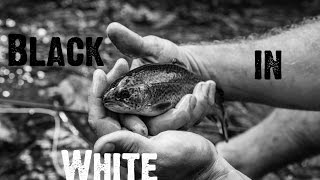 Black in White - Full Film