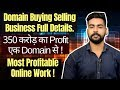 Domain Selling and Buying Business in Hindi | 350 Cr Profit | Earn Money Online