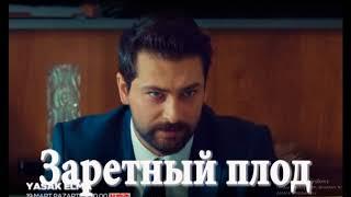 Запретный плод турецкий сериал 2018, сюжет, актеры