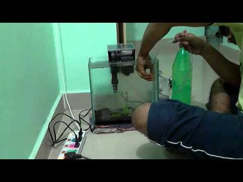 DIY CO2 reactor or generator for aquatic plants in less than 1$