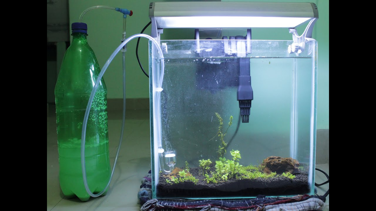 diy co2 reactor or generator for aquatic plants in less. Black Bedroom Furniture Sets. Home Design Ideas