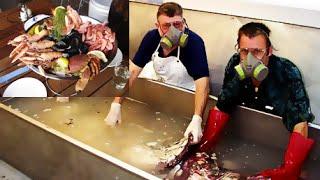 Repeat youtube video จริงหรืออาหารทะเลใส่น้ำยาดองศพ