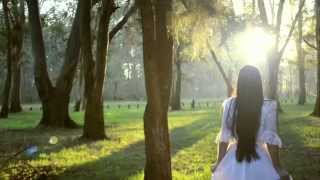sofia daniel save the date wedding hd
