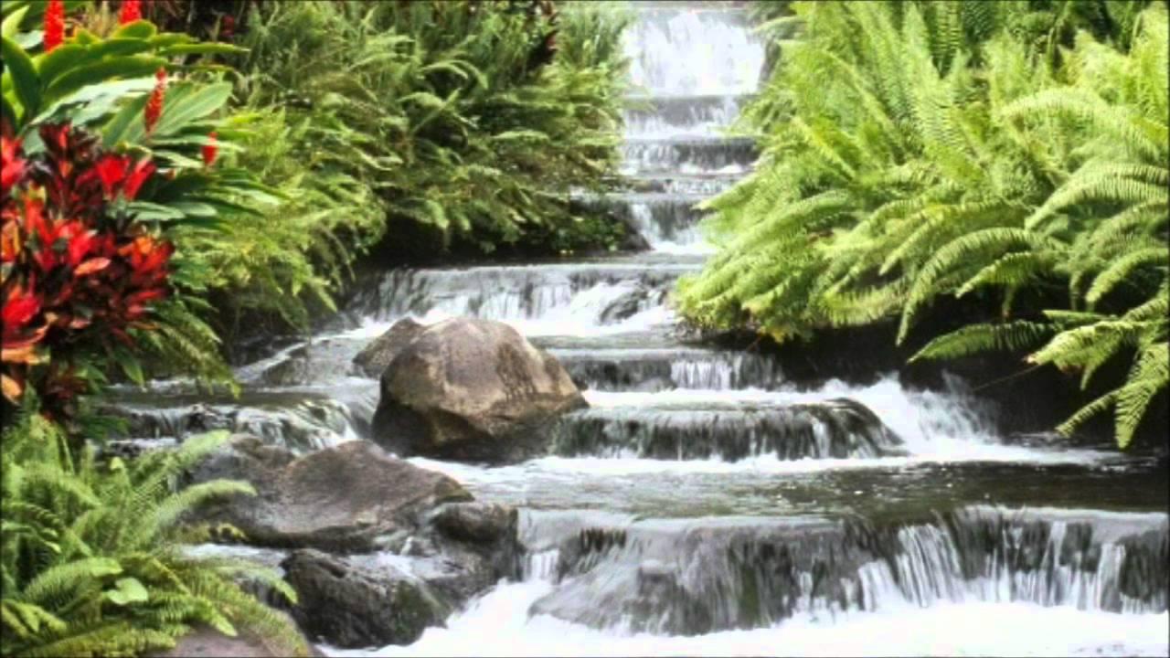 Resultado de imagem para fonte de agua viva