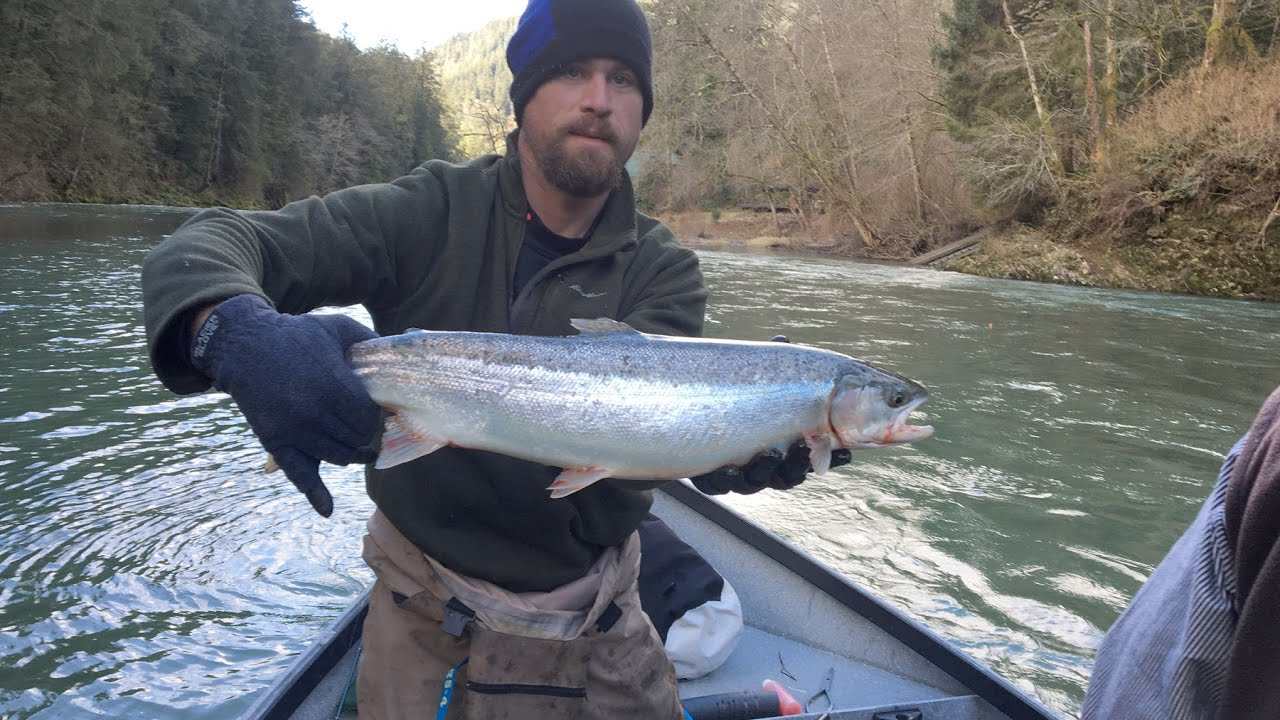 Bobber down winter steelhead youtube for Bobber fishing for steelhead