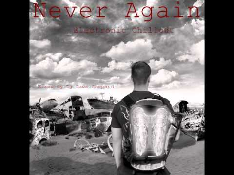 NEVER AGAIN[PsyChill Psybient]