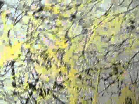 Jack The Dripper: A Modern Artist Pays Homage to Pollock