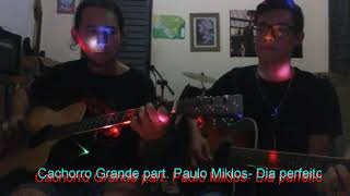 ACUSTICO CACHORRO GRANDE MTV DVD BAIXAR