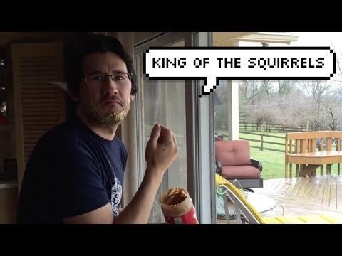 Squirrel King  Original