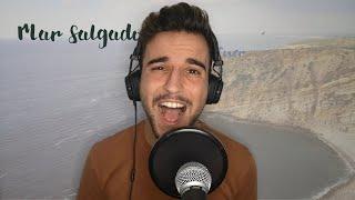 Amor Electro - Mar Salgado (Cover by Rui Serrinha)